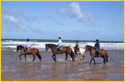 horse riding at ilfracombe, days out for the children