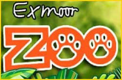 exmoor zoo, family attraction, days out in ilfracombe
